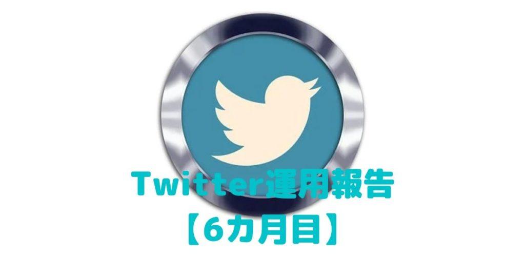 Twitter運用報告,6カ月目